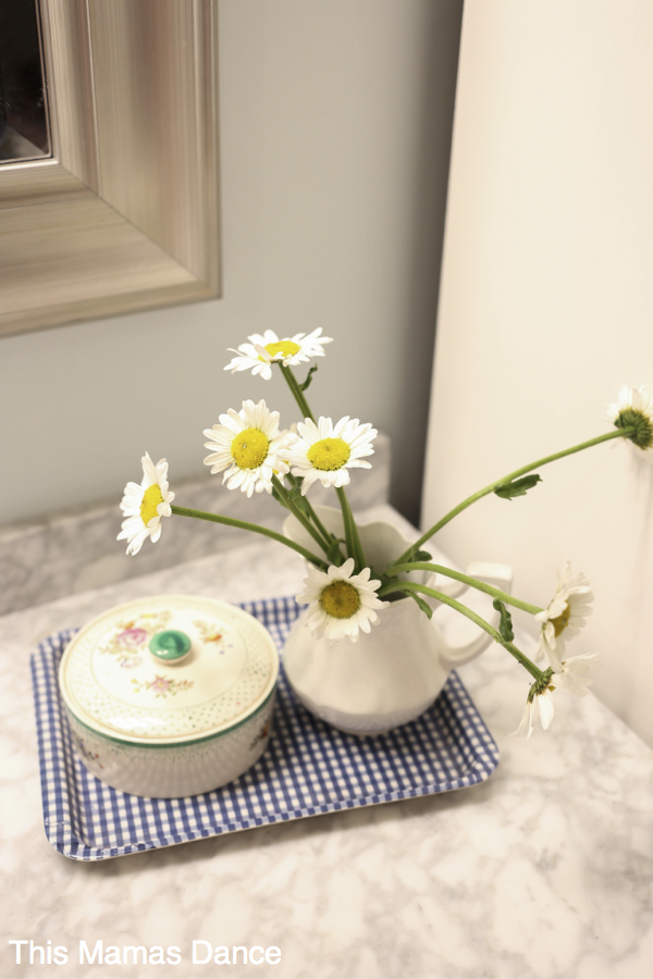 Daisies in Ironstone