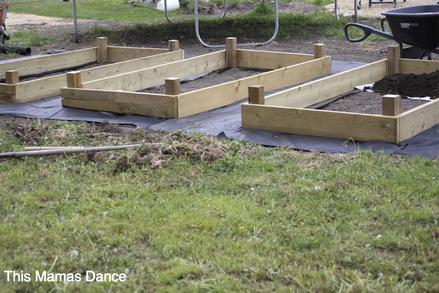 building raised planter beds