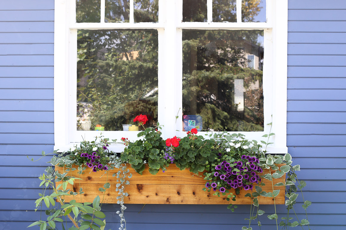 Cedar Window Boxes | This Mamas Dance-2