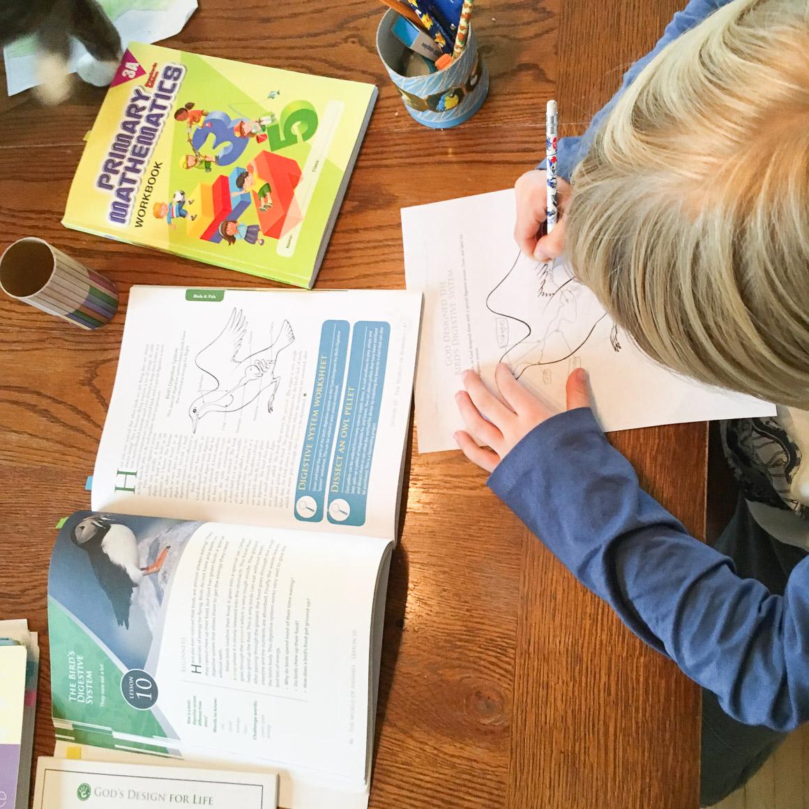 homeschooling-14
